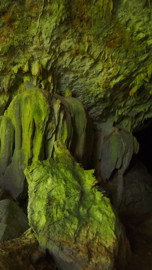 caves-branch061.jpg